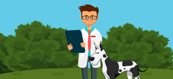 dog-doctor